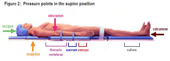Supine Pressure Points